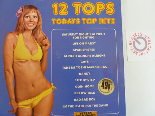 Various artists - 12 TopsToday Top Hits Vol. 13